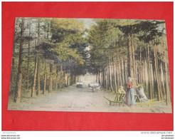 OTTIGNIES -  Parc De L' Etoile - - Ottignies-Louvain-la-Neuve