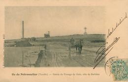CPA Ile De Noirmoutier - Entrée Du Passage Du Gois, Cote De Barbatre - Cheval - Charrette - Circulée 1905 - Ile De Noirmoutier