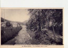 CPA - 63 - 59 - LE MONT DORE - LA DORDOGNE DANS LE PARC - - Le Mont Dore