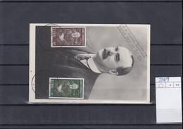 Irland Michel Cat.No. FDC 208/209 Maxi Card - FDC