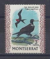 """MONTSERRAT...QUEEN ELIZABETH II...(1952-NOW..)...."""" 1970.."""".....THE FRIGATE BIRD........3c......SG244..........MH... - Albatros & Stormvogels"""