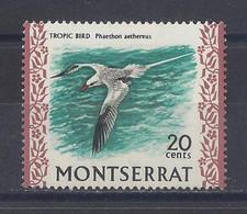 """MONTSERRAT...QUEEN ELIZABETH II...(1952-NOW..)...."""" 1970..""""....TROPIC BIRD........20c......SG249.........MH... - Meeuwen"""