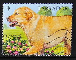 FRANCE 2011 - Timbre N° 4545 - Série Nature - Labrador - 2010-.. Matasellados