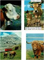 VACHES / Lot 90 C.P.M. Neuves - 5 - 99 Karten