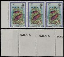 MONTSERRAT 1981 Hogfish Fish 15c MARG.3-STRIP OVPT:OHMS ERROR:OVPT.rev.2 Stamps - Montserrat