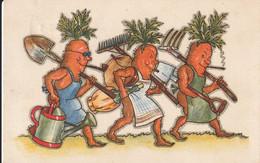 Fruits Et Légumes Carottes - Altri