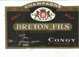 N3 / Wine Old Liqueur Alcohol LABEL Etichetta Etiqueta / Etiquette Alcool / CHAMPAGNE Breton Fils CONGY - Champagne
