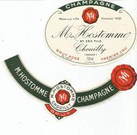 N3 / Wine Old Liqueur Alcohol LABEL Etichetta Etiqueta / Etiquette Alcool / CHAMPAGNE HOSTOMME - Champagne