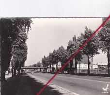 CP 59 - MARCQ EN BAROEUL    -  Avenue De La République - Marcq En Baroeul