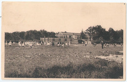 Heide - Diesterweg's Schoolkolonie Te Heide - Het Groot Speelplein (Oostzijde) - Kalmthout