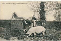 EN PERIGORD - Recherche De La Truffe, L'Arrèt - Non Classés