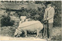 EN PERIGORD - La Récolte De La Truffe, Groupe Sympathique - Cachet Militaire Brive, 126° RI - Non Classés