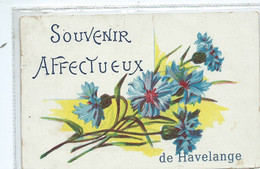 Havelange Souvenir Affectueux ( Cachet D'Havelange ) - Havelange