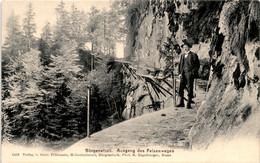 Bürgenstock - Ausgang Des Felsenweges (1493) - LU Lucerne
