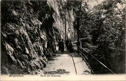 Bürgenstock - Partie Am Felsenweg (2238) - LU Lucerne