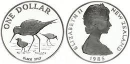 New Zealand, State, 1 Dollar Silver 1985 Black Stilt And Chicks, KM 55a, Proof - Nuova Zelanda