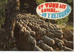 ET TOUS LES LUNDI ... ON Y RETOURNE ! - Humor