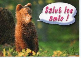 SALUT LES AMIS ! - Humor
