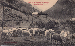 CPA 04 - VALLÉE DE L'UBAYE - Un Troupeau Au Pâturage Dans Les Alpes - COCHE N° 248 - Éditeur à Barcelonnette - Sin Clasificación