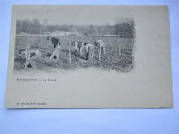 COGNAC -  VITICULTURE - La Taille - Scene Trés Animée En 1901 - Edit. Ch. Colas Et Cie COGNAC - Cognac