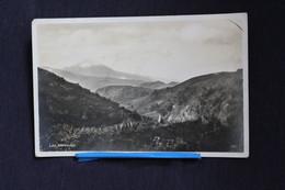 D-119 /  España - Espagne -  Isole Canarias Tenerife Monte De Las Mercedes  / 1931 - Tenerife