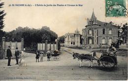 SAINT-NAZAIRE - L'Entrée Du Jardin Des Plantes Et L'Avenue De Béar - Saint Nazaire