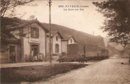 PAVEZIN  .  LA GARE AU COL  .  TRAIN  . - Other Municipalities