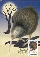 93307- SOUTHERN BROWN KIWI, BIRDS, ANIMALS, MAXIMUM CARD, OBLIT FDC, 1998, ROMANIA - Kiwi