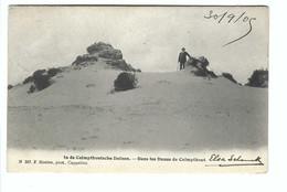 Kalmthout     In De Calmpthoutsche Duinen N.347 F Hoelen,phot. Cappellen 1905 - Kalmthout