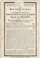 BRUGGE / IZEGEM - Josephus Baron De PELICHY - Zoon Van Joannes, Burgemeester En M. Van HUERNE - °1809 En +1882 - Imágenes Religiosas
