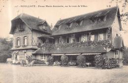 HOULGATE - Ferme MARIE ANTOINETTE , Sur La Route De Villers - Houlgate