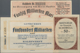 Deutschland - Notgeld - Schleswig-Holstein: Umfangreiche, Alphabetisch Aufgebaute Sammlung Von Fast - [11] Local Banknote Issues