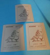 TIMBRE DE GREVE  ROANNE   LES  3 - Strike Stamps