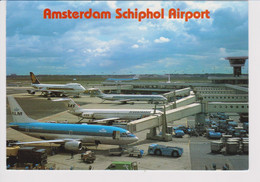 Rppc KLM K.L.M Royal Dutch Airlines Boeing 747 Finnair, SAS @ Schiphol Amsterdam Airport - 1919-1938