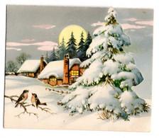 Bonne Année --carte Mignonnette Double --Paysage De Village Sous La Neige (oiseaux).... à Saisir - Neujahr