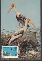 INDIA, 1976, MAX CARD WITH STAMP, Keoladeo Ghana Bird Sanctuary, Bharatpur, New Delhi Cancelled - Sin Clasificación