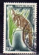 MADAGASCAR MALGACHE 1960 RICE PLANT PIANTA DI RISO FAHAFAHANA TANINDRAZANA FANDROSOANA FR 10f USED USATO OBLITERE' - Used Stamps