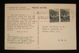 Pays Bas Suriname CP Publicité Croisière  BW§C°  1959  (idem Ionyl Dear Doctor En Beaucoup + Rare  ) - Surinam ... - 1975