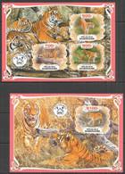 PA002 2019 TIGERS WILD CATS FAUNA ANIMALS BL+KB MNH - Felinos