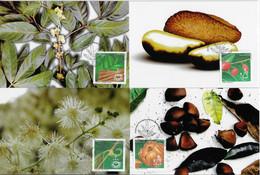 Brazil 2012 Complete Set 4 Maximum Card Medicinal Plants Flora Phytotherapy - Plantas Medicinales
