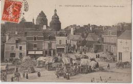 CHATEAUGIRON ( I. Et V. ) - Place Des Gâtes Un Jour De Foire. Café Lizé.,Etals Commerçants. Personnages. Carte Animée. - Châteaugiron
