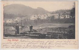 Sachsen-Anhalt - Neu Birkigt, Ortsansicht, Sw-AK (ca. 1910) Gelaufen 1925 - Sin Clasificación