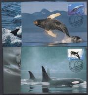 AAT 1995 Whales & Dolphins 4x 4 Maxicards (51174) - Tarjetas – Máxima