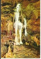 La Côte D'Azur , LES GROTTES DE SAINT CEZAIRE ( A.M. ) , Le Squelette Et Les Orgues ; The Skeleton And The Orgons - Otros Municipios