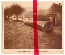 Orig. Knipsel Coupure Tijdschrift Magazine - Drongen ? - Oude Hoeve Aan De Leie - 1930 - Ohne Zuordnung