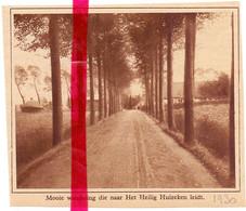 Orig. Knipsel Coupure Tijdschrift Magazine - Drongen - Dreef Naar Het Heilig Huizeken - 1930 - Ohne Zuordnung