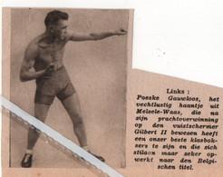 BOKSEN..1934.. POESKE GAUWLOOS HET VECHTLUSTIG HAANTJE UIT MELSELE WAAS - Ohne Zuordnung