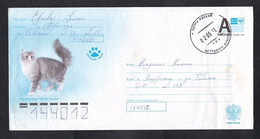 Russia Stamped Stationery .Norwegian Forest Cat (10) - Hauskatzen