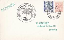 Habay La Neuve - Benediction De La Fôret - Bureau De Poste Automobile 1966 - Lettres & Documents