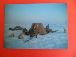 CP Groupe Etudes Regions Polaires Fjord SCORESBYSUND - GOENLAND EST - 10° Expédition GECRP Photo ELIN - TAAF : Franz. Süd- Und Antarktisgebiete